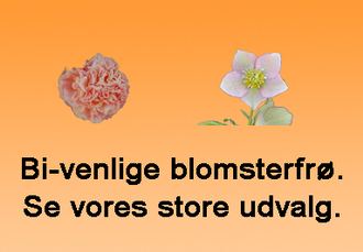 Bivenlige blomsterfrø